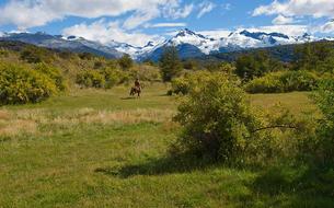 Patagonie, sur la route du bout du monde
