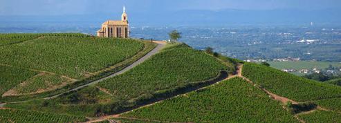 Connaissez-vous les vins du Beaujolais et Lyonnais ?