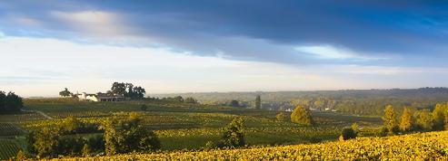 Les vins bordelais lancent un nouveau plan pour dynamiser leurs ventes