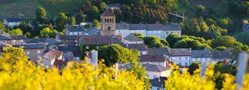 Testez vos connaissances sur les vins de la Vallée du Rhône !