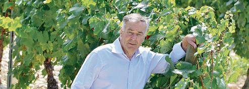 Eloi Dürrbach : Le vin, c'est juste du raisin qui fermente