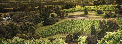Les Australiens inventent le vin qui parle