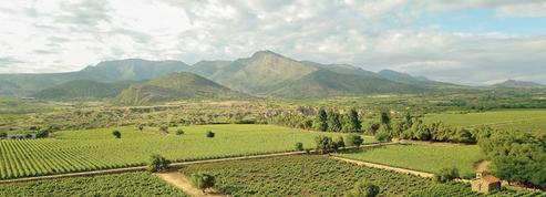 La Bolivie s'éveille à l'oenotourisme