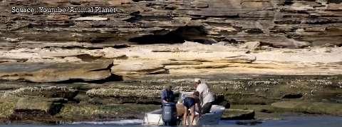 Naufragé sur une île déserte, il est sauvé par une équipe de télévision