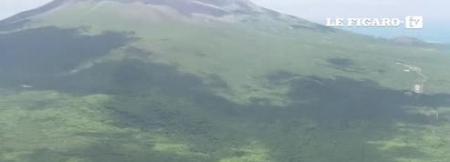 Japon: l'enfant perdu dans la forêt finalement retrouvé sain et sauf