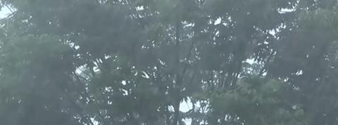 Les intempéries au Japon provoquent d'impressionnants glissements de terrain