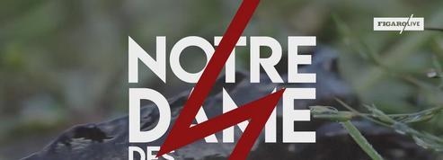 Notre-Dame-des-Landes, retour sur 60 ans de désaccords