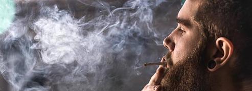 La consommation de cannabis en quelques chiffres