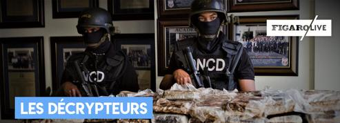 Cocaïne : pourquoi le trafic explose en France ?