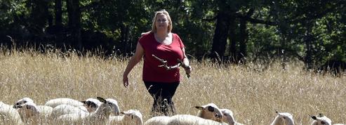 Salon de l'agriculture : parcours d'une agricultrice engagée du Lot