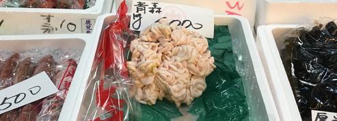 Le shirako ou liquide séminal de poisson, l'ingrédient dont raffolent les Japonais