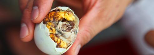Zoom sur l'œuf balut, cette spécialité protéinée qui fait fureur aux Philippines