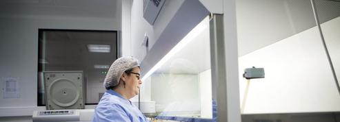 Cancer: l'immunothérapie cherche à repousser ses limites