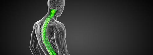 Un bioverre pour régénérer de l'os humain