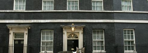 Le chat de Downing Street survit à son maître