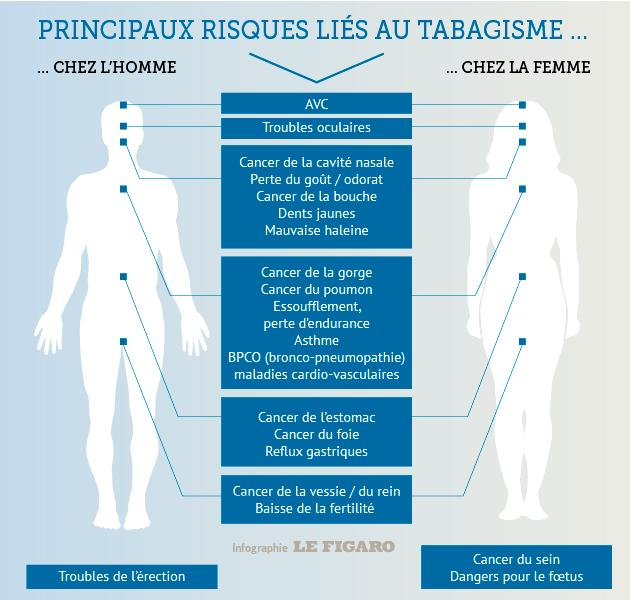Cette infographie montre les risques liés au tabac selon les régions corporelles