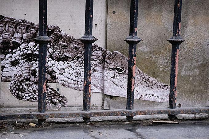 Affichage sauvage rue de Trudaine, 75009, le Crocodile, novembre 2011.