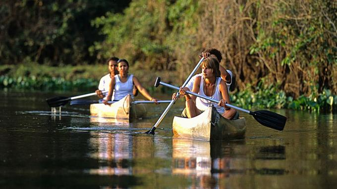 Le canoë est idéal pour flotter sur les lacs, voguer sur des prairies inondées et s'immerger dans la vie intime du Pantanal.