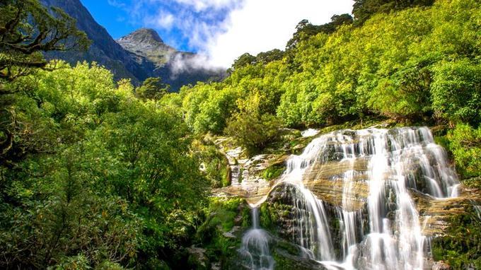 Découvertes en 1880, les Sutherland Falls attirent depuis les voyageurs du monde entier. C'est d'ailleurs pour faciliter l'accès à cette merveille de la nature qui le Milford Track fut tracé.