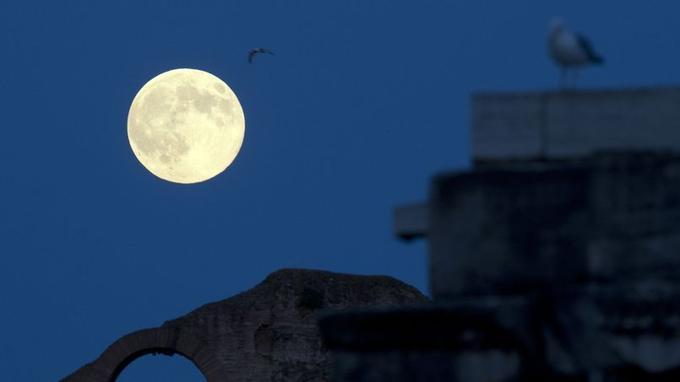 La Superlune se lève dimanche soir sur le Colisée de Rome.