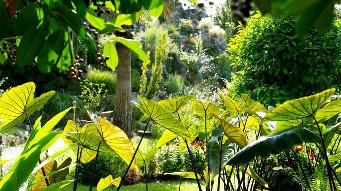 La beauté du Jardin botanique d'André Heller ne peut que séduire et fait l'effet d'une reposante oasis.