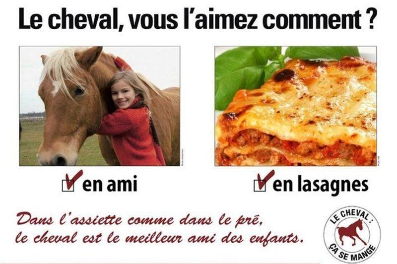 De nombreuses parodies avec des enfants, dont le cheval est souvent un ami, ont été publiées sur les réseaux sociaux.