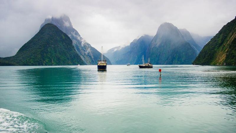 Super Spectaculaires paysages en Nouvelle-Zélande dans les forêts de Jade NJ15