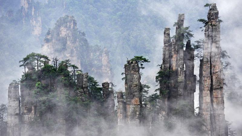 Très La forêt chinoise qui a inspiré James Cameron pour Avatar VE74