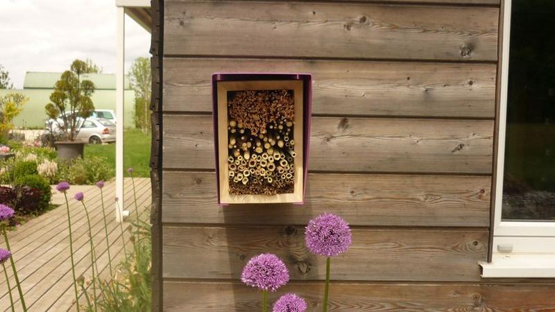 Des nichoirs pour redonner droit de cit aux oiseaux - Faire peur aux oiseaux jardin ...