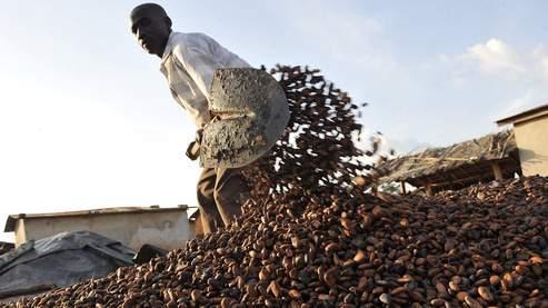 La crise politique ivoirienne fait flamber le cacao