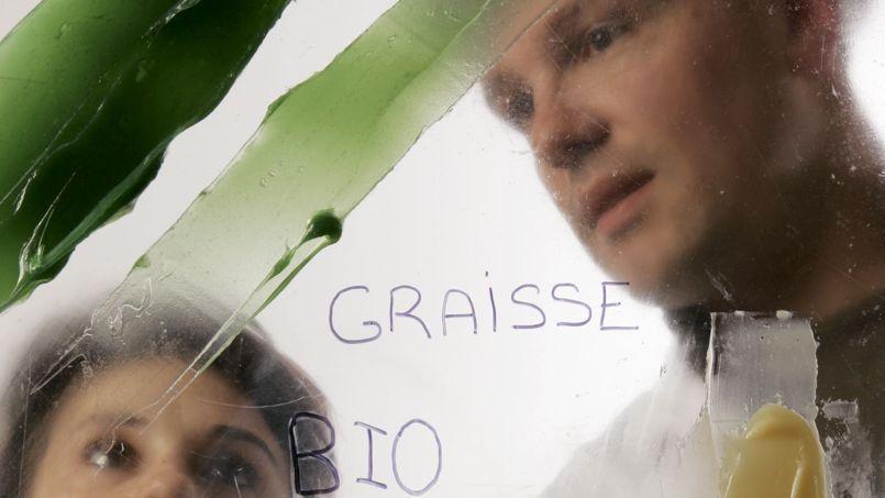 Le spectaculaire essor de la chimie «verte»