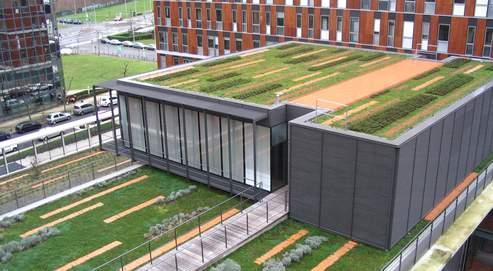L'immeuble du ministère des Finances à Noisy-le-Grand, en Seine-Saint-Denis. Les toitures végétalisées limitent le recours à la climatisation (DR).