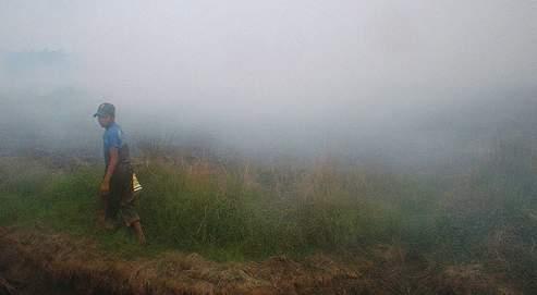 Une forêt en feu à Banjarbaru, dans le Kalimantan (AP).