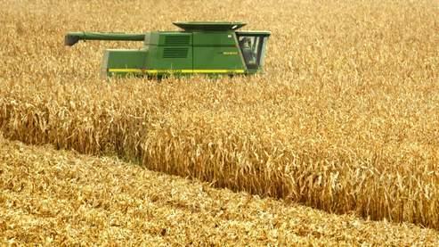 Nicolas Sarkozy s'est dit prêt à «recourir à la clause de sauvegarde» sur les OGM, s'il y avait des «doutes sérieux» sur ceux qui sont cultivés en France.