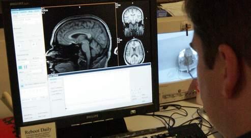 Une machine qui devine ce que voit le cerveau