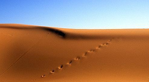 Comment le Sahara est devenu un désert