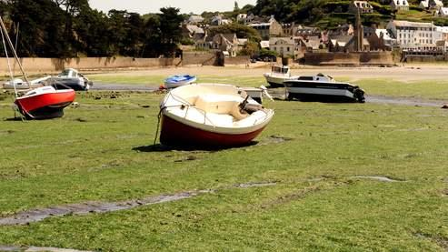 Sur la plage de Saint-Michel-en-Grève ont été mesurés des taux anormalement élevés d'hydrogène sulfuré, un gaz mortel.