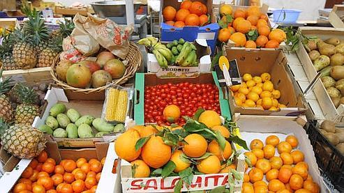 «Les prix des fruits ont baissé de 19% alors que ceux des légumes ont chuté de 18% par rapport à l'été 2008», selon Thierry Damien, le président de l'association Familles rurales. (Photo Jean-Christophe Marmara / Le Figaro)