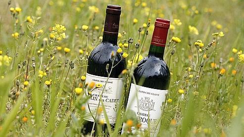 Accompagnez vos repas de vins bio