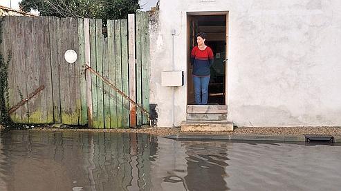 Une victime de la tempête, mardi, à l'île de Ré.