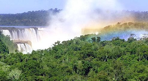La forêt, enjeu majeur du changement climatique