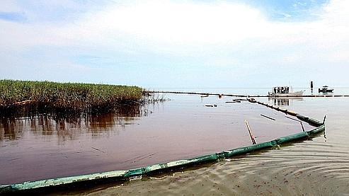 Le pétrole qui s'échappait du puits a déjà fortement dégradé les côtes de Louisiane.