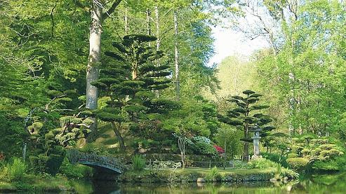 S 39 offrir un beau jardin for Dessiner un jardin paysager