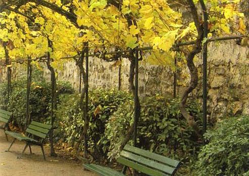 Silence le nouveau luxe for Jardin catherine laboure