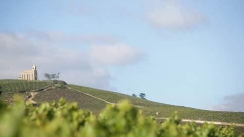 Le Domaine de la Madone dans le Beaujolais. Crédits photo: Inter Beaujolais