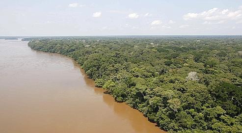 Les forêts tropicales sous l'œil des satellites