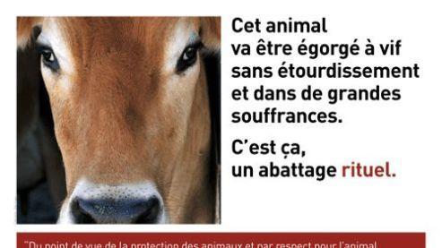 Nouvelle campagne d'affichage des associations de défense des animaux.