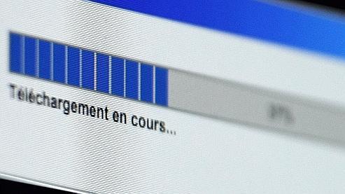 La moitié des internautes français pirate sur le net