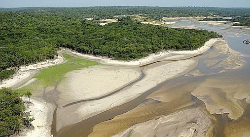 En 2010 s'est produite la pire sécheresse depuis un siècle en Amazonie causant la baisse du niveau des eaux (ici le Rio Taruma, près de Manaus) et la destruction de la forêt tropicale.