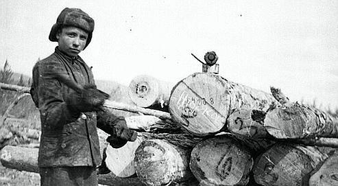 Un enfant affecté aux travaux forestiers. Le site Internet est enrichi de photos qui témoignent de la déportation. (Musée du génocide, Vilnius, Lituanie)